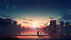2girls, absurdres, animal, basket, bicycle, bird, building, cloud, commentary request, from side, ground vehicle, highres, long hair, multiple girls, original, riding bicycle, scarf, scenery, shirt, shoes, short hair, signature, sitting, skirt, sky, skyrick9413, star (sky), starry sky, sunlight, sunset