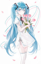 1girl, absurdres, bangs, blue eyes, blue hair, closed mouth, collared shirt, commentary, dress, eyebrows visible through hair, flower, hair between eyes, hatsune miku, highres, holding, holding flower, iren lovel, long hair, looking at viewer, petals, pink flower, puffy short sleeves, puffy sleeves, see-through, shirt, short sleeves, simple background, solo, thighhighs, tulip, twintails, very long hair, vocaloid, white background, white dress, white legwear