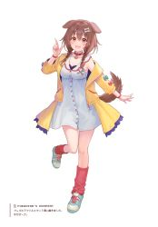 1girl, :3, absurdres, animal collar, animal ears, bangs, blush, bone hair ornament, bracelet, braid, brown eyes, brown hair, brown tail, buttons, cartoon bone, collar, collarbone, dog ears, dog girl, dog tail, dot nose, dress, fangs, fukahire (ruinon), full body, hair between eyes, hair ornament, hairclip, highres, hololive, inugami korone, jacket, jewelry, long hair, looking at viewer, loose socks, low twin braids, nail polish, off shoulder, open mouth, red collar, red legwear, shoes, short dress, simple background, sneakers, socks, solo, standing, standing on one leg, tail, twin braids, virtual youtuber, white background, white dress, wristband, yellow jacket, yellow nails