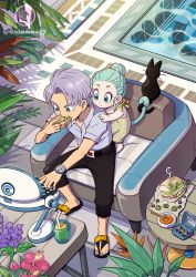 1boy, 1girl, age difference, animal, aqua hair, armchair, belt, black belt, black pants, blue eyes, bowl, box, bra (dragon ball), braid, bread, brother and sister, bud, capsule corp, cat, caustics, chair, checkered, checkered floor, closed mouth, coffee table, collarbone, collared shirt, computer, crown braid, dot nose, dragon ball, dragonball z, dress shirt, drink, drinking straw, eating, expressionless, flower, food, food wrapper, from behind, glass, grey shirt, hair bun, hair slicked back, hand on another's shoulder, hand up, hibiscus, highres, hoi-poi capsule, holding, holding another's tail, holding food, juice, laptop, leaf, lettuce, looking down, monkey tail, norita (6110885), olive, outstretched hand, pale skin, palm leaf, pants, parsley, pepper, plant, pool, purple flower, purple hair, red flower, sandals, sandwich, sauce, shadow, shirt, short sleeves, siblings, sidelocks, sitting, spoon, table, tail, tama (dragon ball), trunks (dragon ball), twitter username, typing, watch, water, wide-eyed, wide shot, wristwatch