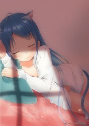 1girl, :3, animal ears, bangs, bed, blue hair, blush, breasts, cat ears, cat tail, dress shirt, eyebrows visible through hair, eyes closed, kantai collection, long hair, long sleeves, lying, mae (maesanpicture), on bed, on side, open clothes, open shirt, panties, pillow, samidare (kancolle), shade, shirt, sleeping, small breasts, solo, tail, twitter username, underwear, white panties, zzz