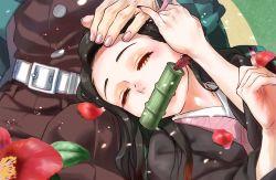 1boy, 1girl, 4o080 yotabnc, bamboo, belt, bit gag, black hair, blush, commentary request, eyes closed, fingernails, flower, gag, hand on another's head, highres, japanese clothes, kamado nezuko, kamado tanjirou, kimetsu no yaiba, kimono, lap pillow, long hair, multicolored hair, petals, red flower, two-tone hair