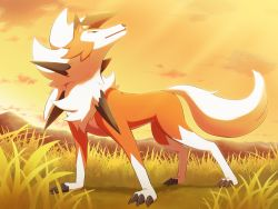 claws, cloud, commentary request, creatures (company), full body, game freak, gen 7 pokemon, grass, kemonobito, looking back, lycanroc, lycanroc (dusk), nintendo, no humans, outdoors, pokemon, pokemon (creature), sky, solo, standing